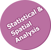 Statistical and Spatial Analysis